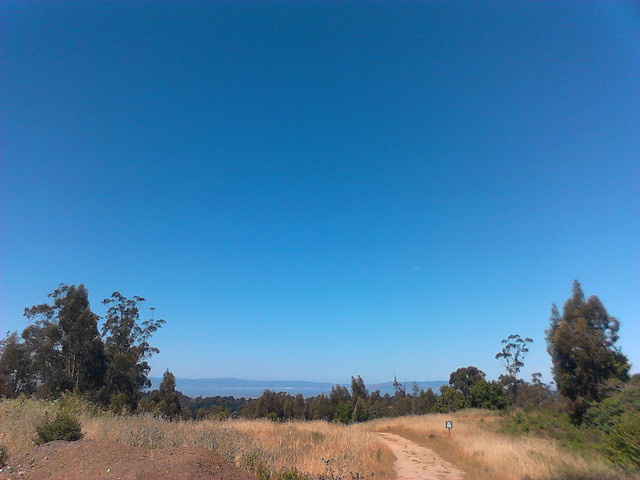 Top of Cottontail Trail, Chabot Regional Park.