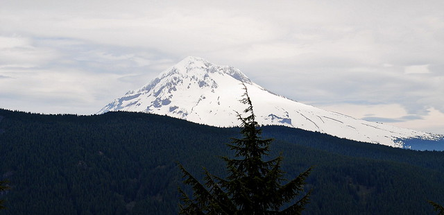 Mt. Hood from the Hunchback Mountain Trail #793 - Mt. Hood National Forest