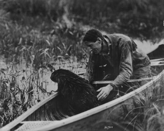 Beaver in canoe with Grey Owl / Un castor en canot avec Grey Owl