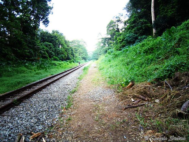 KTM Railway Track 08