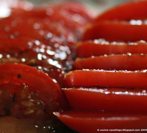 Tomaten nah klein copyr