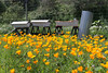 Bee Hives and Poppies by bartt