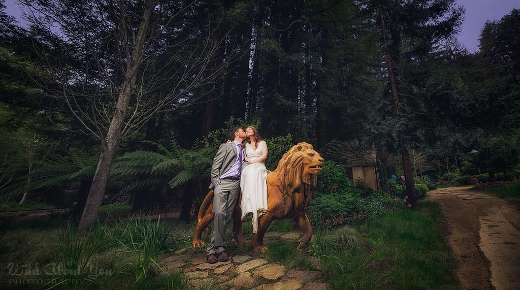 fantasynestldownwedding01