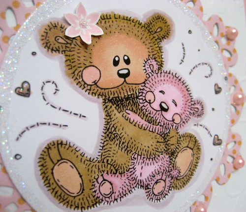 TEDDIES NIAMHS CARD