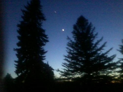 Night in the woods by northwoodsluna