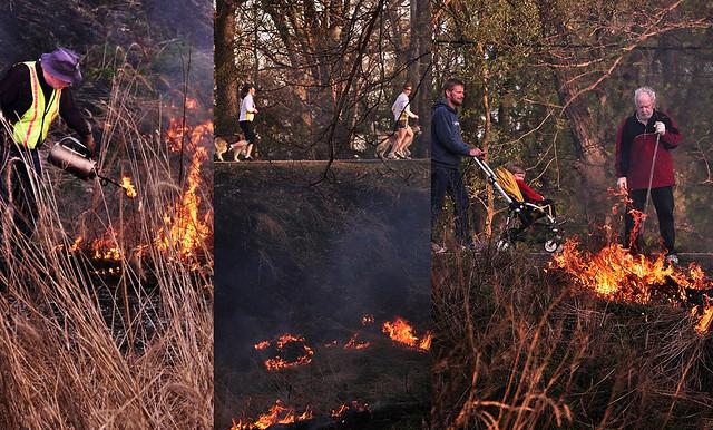 Spring Burn Triptych