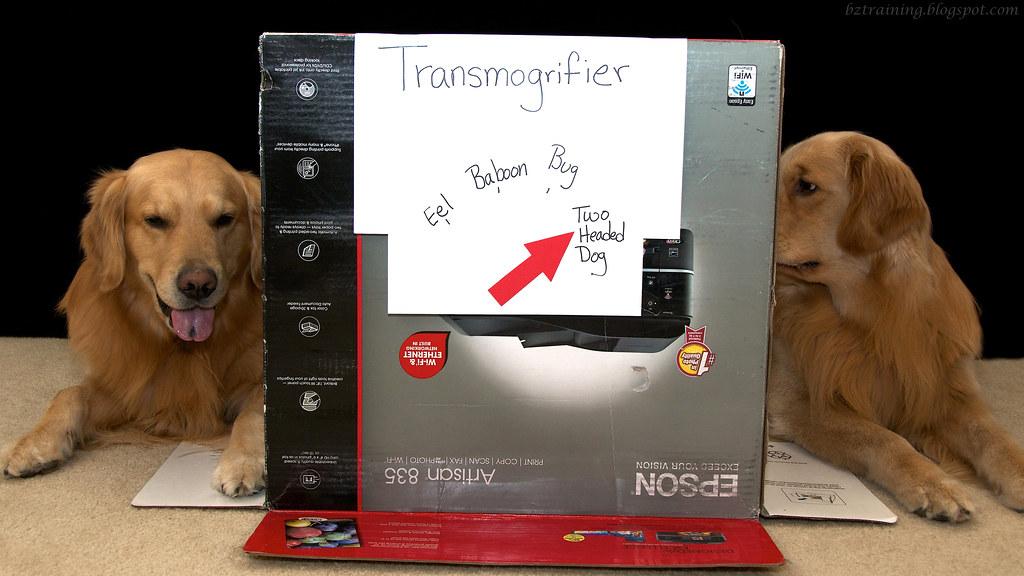 Transmogrifier