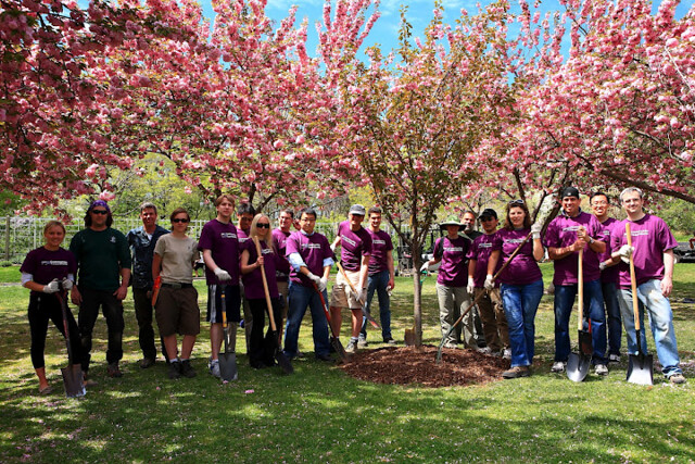 The volunteers pose proudly with the cherry tree they planted. Photo by Lenny Karunungan.