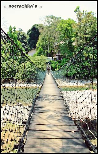 Jembatan gantung menuju Ecolodge ..