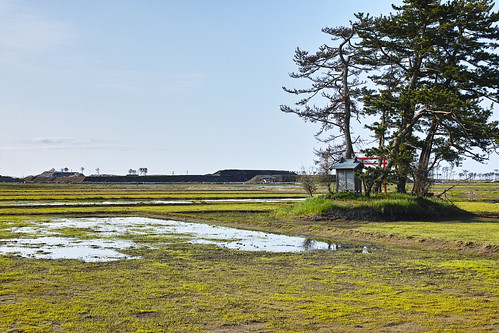 定点観測 荒浜地区-10 by Stroll diary