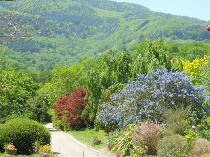 Visitando el jardín botánico de Iturraran
