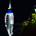 Bokeh Tower by i am dabe