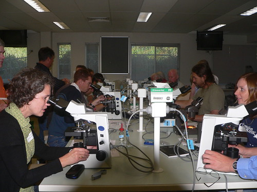 Simone Louwhoff (left) leading the lichen identification workshop
