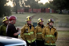 Los Angeles Firefighters Assist in Rescue of Trapped Horse