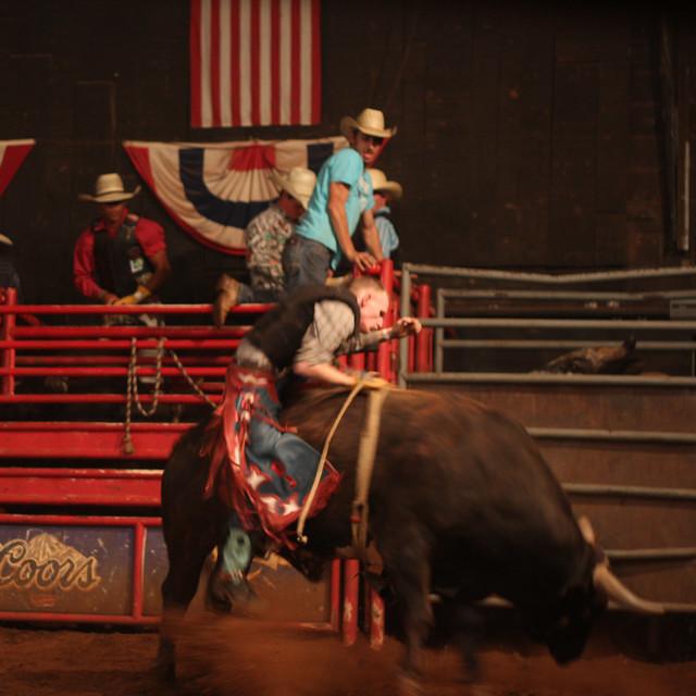 CowboyBull