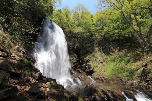 Waterfall / 滝(たき)
