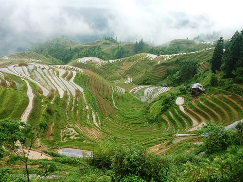 C-Guangxi-Pingan-Terrasse des 7 etoiles (65)