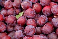 plant(0.0), grape(0.0), nectarine(0.0), zante currant(0.0), pluot(1.0), damson(1.0), produce(1.0), fruit(1.0), food(1.0), myrciaria dubia(1.0),