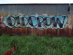 penlands graffiti old crow