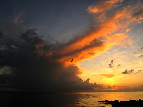 ocean sunset sky orange storm gulfofmexico beautiful horizontal clouds florida horizon naples swfl