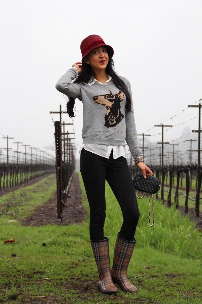 In the Rain 1