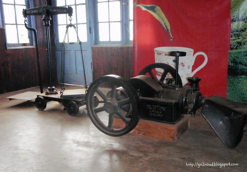 Экскурсия по чайной фабрике