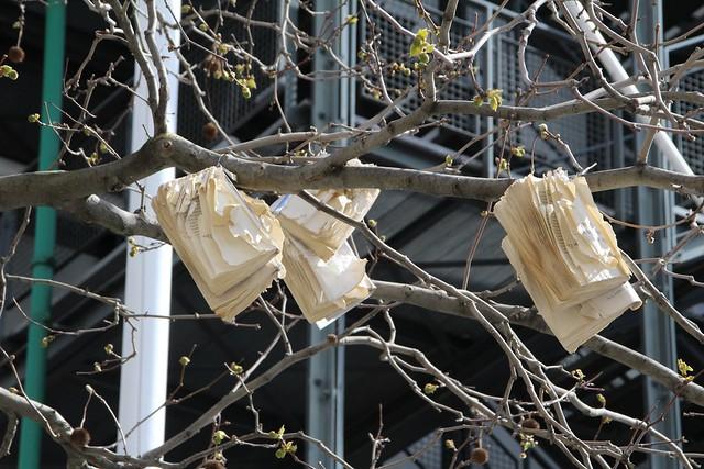 Livres dans les arbres