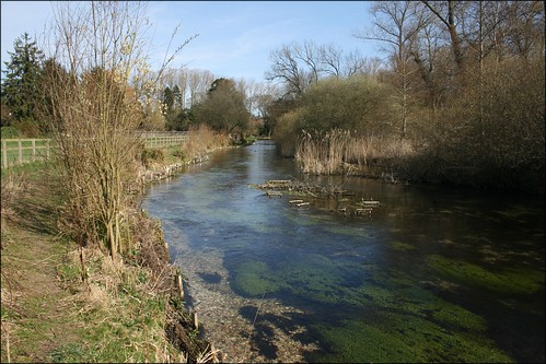 The River Test near Whitchurch