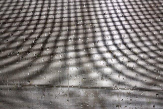 saturday rain