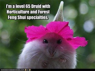 lol druid hamster with petunia hat