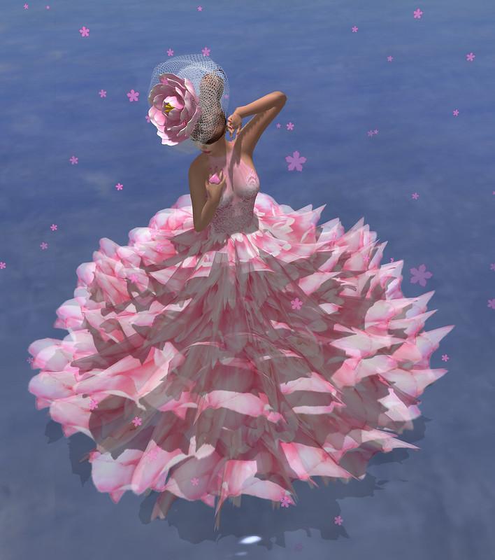 Bloom storm2