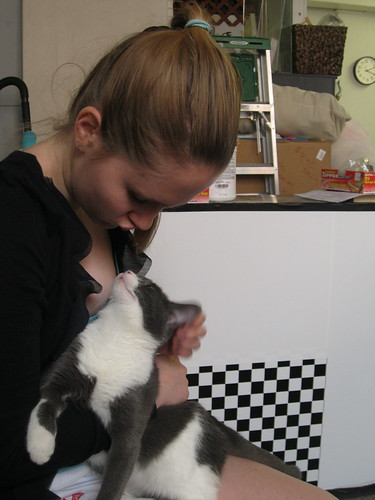 Abbie with the kitten again