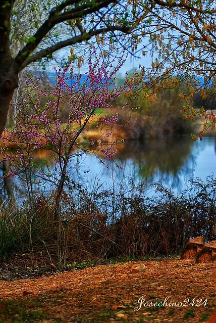 Relax en el rio bullaque