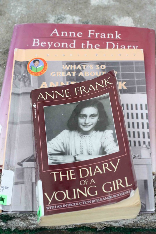 Diary of Anne Frank Writing Prompts