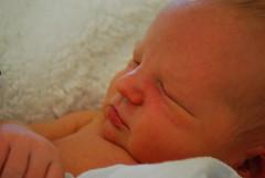 Baby Cooper 024