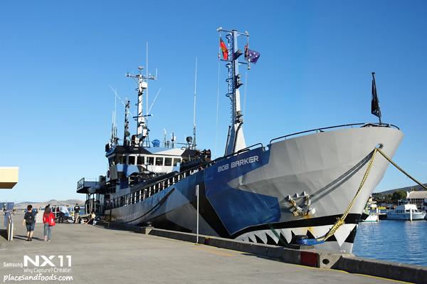 seasheperd ship hobart2