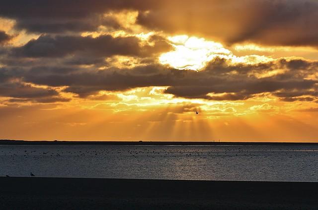 Vlieland - punt Vliehors - 06.18 uur
