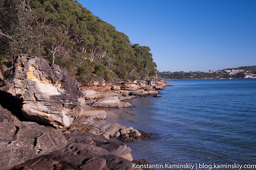 Manly scenic-2109