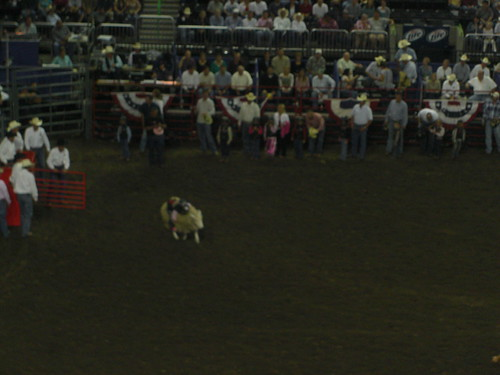 Texas Rodeo by Jenny Lowthrop