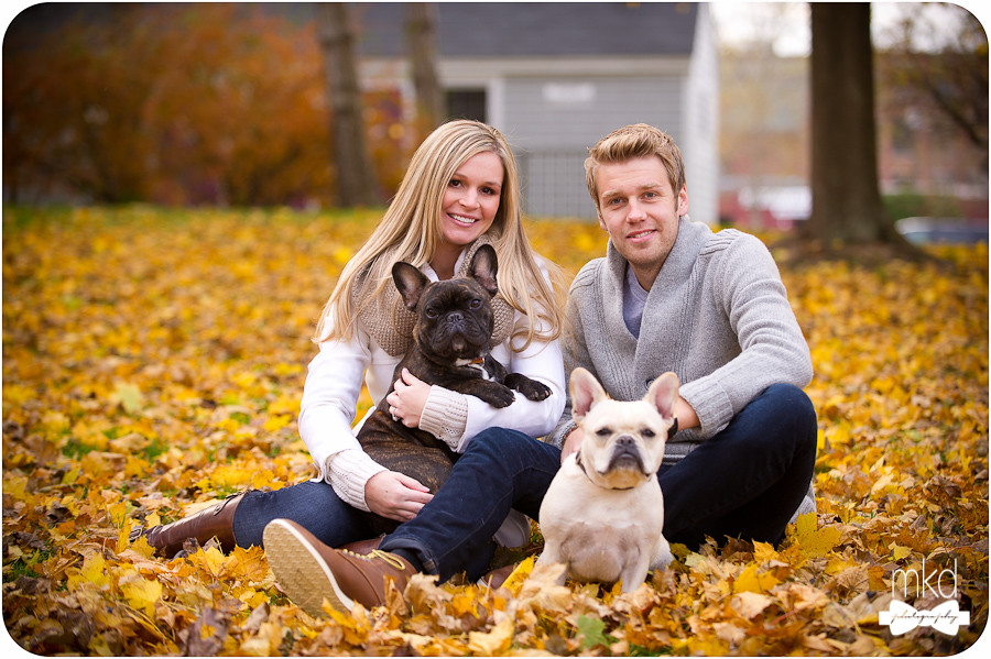 French Bulldogs  - Engagement Session