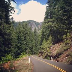 Highway 242