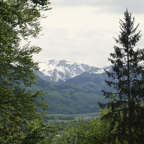 Suisse15
