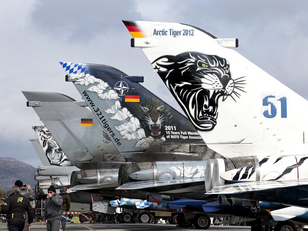 nato tiger meet 2012 air show