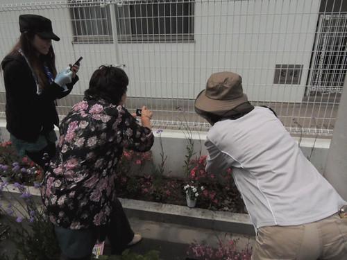 2012-6-2ビオトープガーデン実習-8