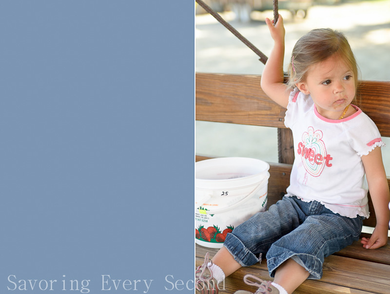 Strawberry Picking 1-008-Edit.jpg
