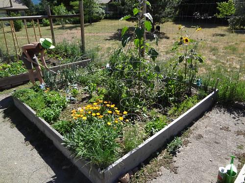 2012.06_garden work