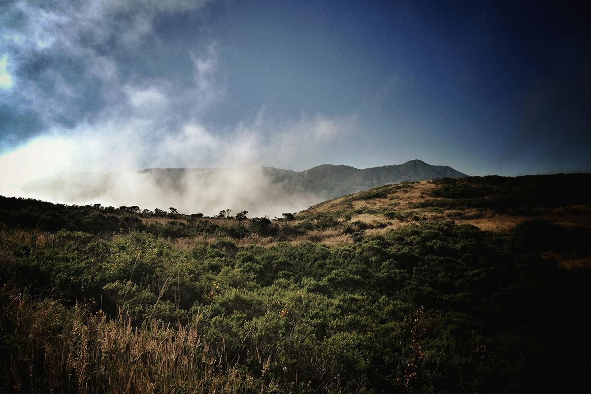 Mt. Tamalpais