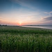 Small photo of Abberton Reservoir Setting Sun