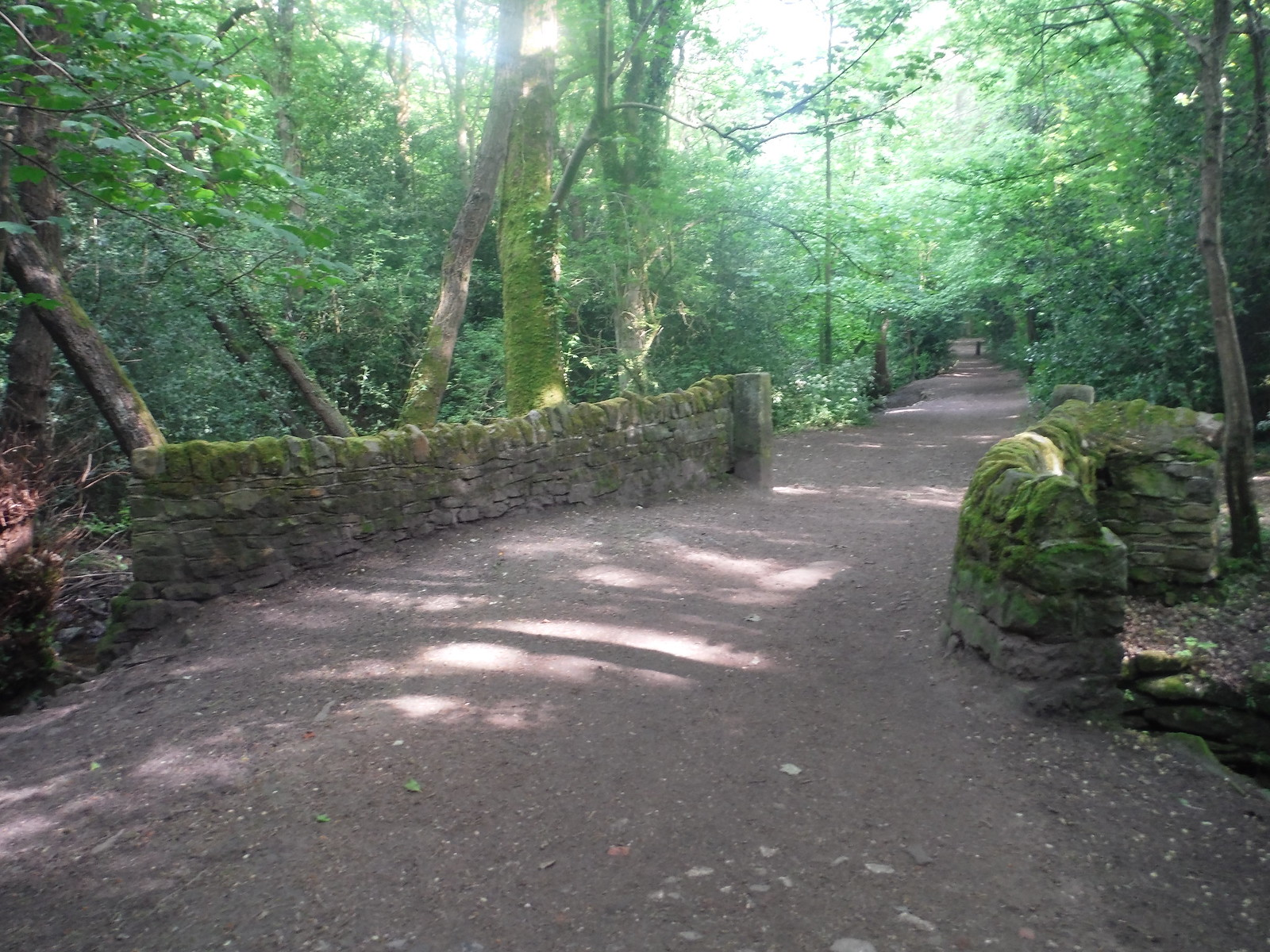 Grade II listed packhorse bridge, Ecclesall Woods SWC Walk 267 - Sheffield Circular (via Porter, Limb, Sheaf and Gleadless Valleys)
