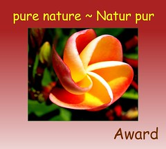 name of the group fly me to the moon changed in: pure nature ~ Natur pur